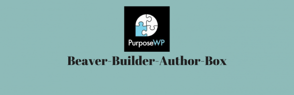 Purpose wp author