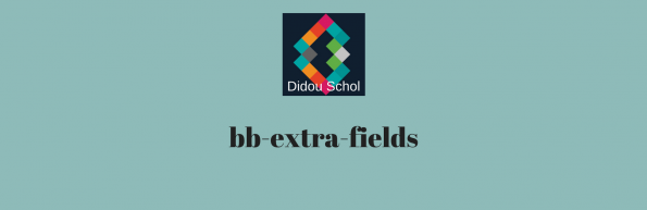 bb-extra-fields