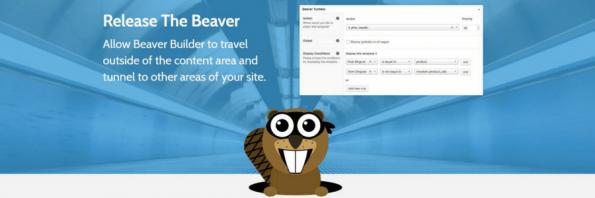 Beaver Tunnels